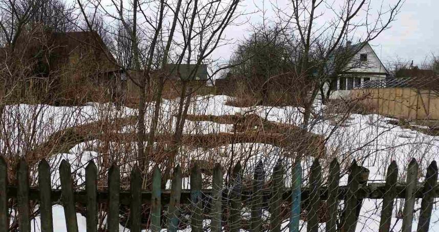 Поселок новое токсово, всеволожский район, ленинградская область